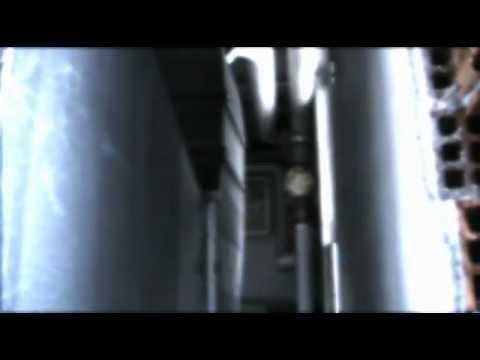 Alex – trailer 2012