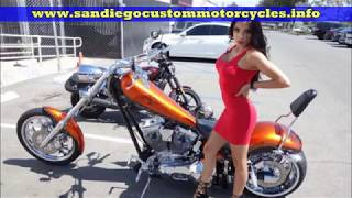 Big Dog Motorcycle Ride - Big Dog k9 for sale