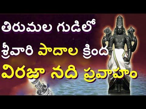 తిరుమల గర్భగుడిలో శ్రీవారి పాదాలవద్ద విరజా నది/Unknown Facts About Tirumala In telugu/Telugu media