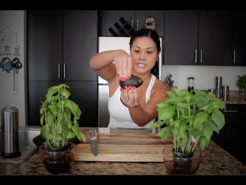 SEXY LOSER: Breakfast Recipes!!!