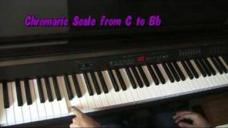 Paul McCartney Maybe Im Amazed  Piano Lesson chords Tutorial