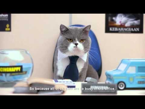 Kucing Happy Respons Edisi Khas