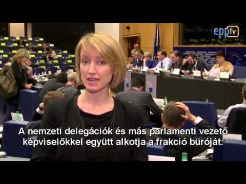 A néppárti frakció tevékenysége az Európai Parlamentben