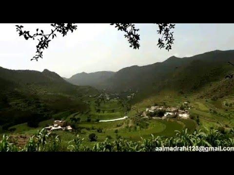 Yemen tourism Green's father
