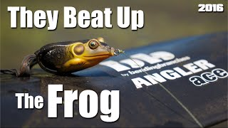 Bass Fishing- They Beat Up The Frog (2016)