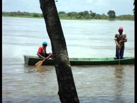Pesca con atarraya en el Orinoco.