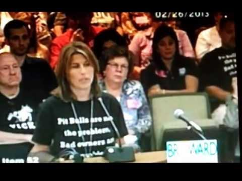 Broward County Commissioners Meeting Feb. 26, 2013 RE: Enact BSL Law in Broward County