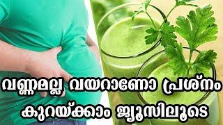 വണ്ണമല്ല വയറാണോ പ്രശ്നം  കുറയ്ക്കാം ജ്യൂസിലൂടെHealthy kerala | Health tips | Fat | Fat loss