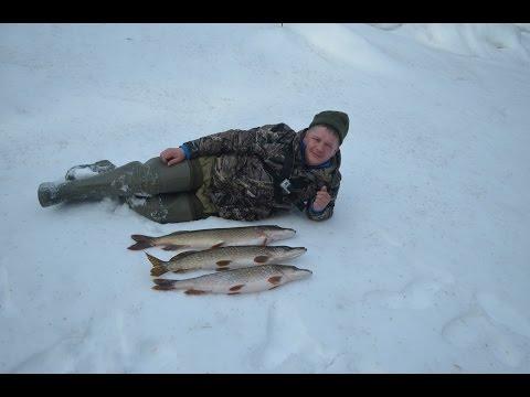 охота рыбалка в коми 2016