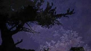 Watch Graveland Carpathian Wolves intro video