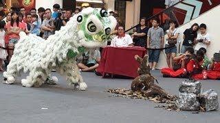 玄武龙狮体育会 @ 2013 Viva Home 万利兴杯 传统舞狮比赛