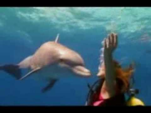 Bahamas Tourism Guide – Vacation Reviews, Resorts, Cruises, All Inclusive, Spas, Golf, Travel