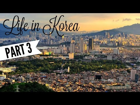 Life In Korea (한국 에서 생활) - PART 3 | South African Couple (남아프리카 커플) | Teaching, Language, Church