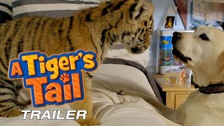 A Tiger's Tail - Trailer