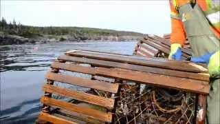 Season 60 - A Dory in Mira Bay