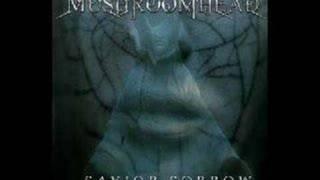 Watch Mushroomhead Along The Way video
