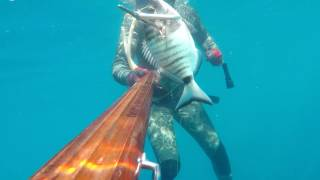White Fishies Spearfishing From Turkey at June by Cihan Atahan