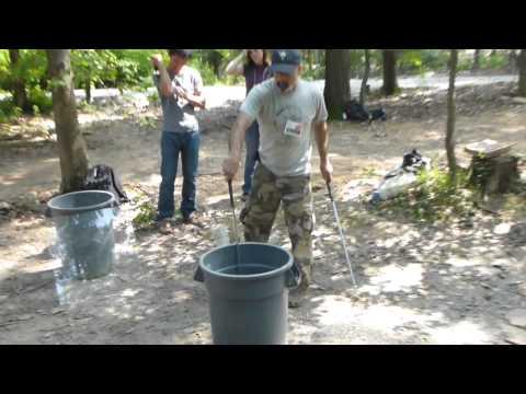 Forest Cobra Handling Basics
