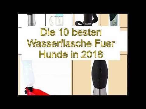 Die 10 besten Wasserflasche Fuer Hunde in 2018