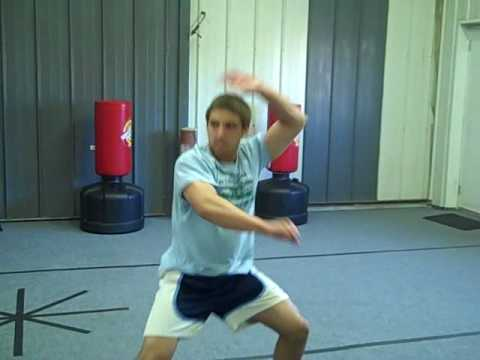 Choy Lay Fut Fundamental Training Image 1