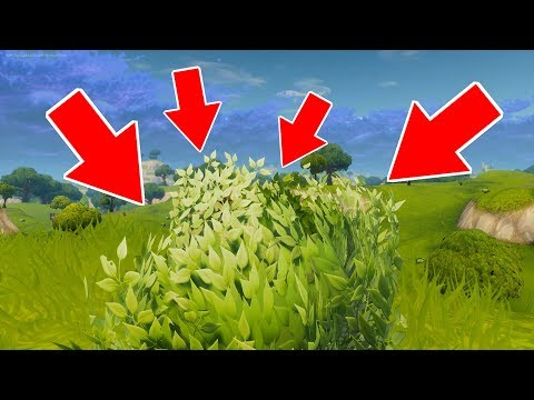 How To Defeat The Bush! (Fortnite Battle Royale) Funny Moments