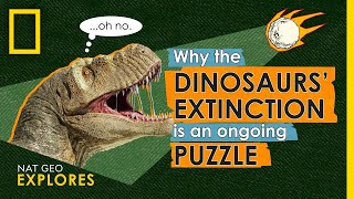 Why the Dinosaurs' Extinction is an Ongoing Puzzle | Nat Geo Explores