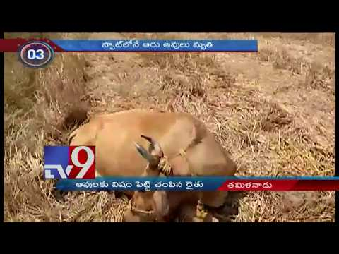 24 Hours 24 News || Top Trending News || 03-06- 2018 - TV9