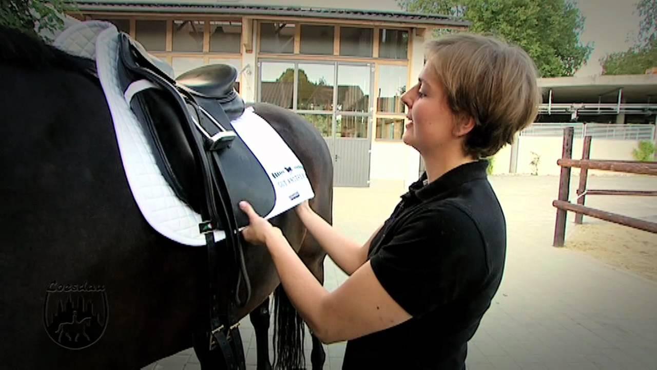 basics mit kati das pferd richtig satteln youtube. Black Bedroom Furniture Sets. Home Design Ideas