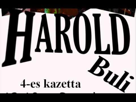 Harold Zenekar - Ez Majdnem Szerelem Volt