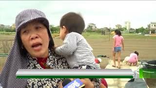 VTC14 | Nam Định: Nước biển dâng cao đột ngột, nhiều vùng ngập nặng