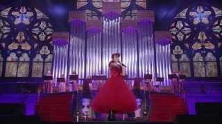 水樹奈々『SCARLET KNIGHT』(NANA MIZUKI LIVE THEATER 2015 -ACOUSTIC- in さいたまスーパーアリーナ)