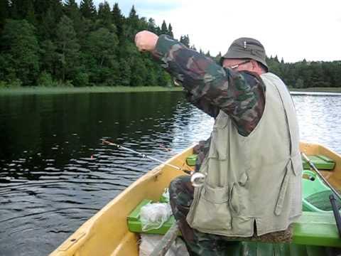 рыбалка на фидер на селигере видео