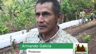 Rendición de Cuentas MAG/CENTA: Transparencia Activa