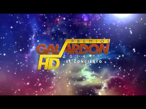 Premios Galardón HD 2014 - Animacion