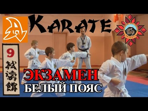 Экзамен по каратэ на белый пояс (9 кю). Karate exam on 9 kyu