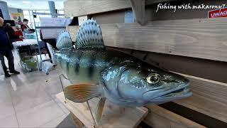 Carpathia Fishing  | Podkarpackie Targi Wędkarskie | Rzeszów G2A Arena