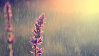 4 HOURS of Piano Instrumental Music with Relaxing Rain | Paeceful Long Playlist | Background music
