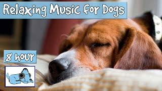 OVER 8 HOURS of Sleep Music for Dogs! Help Your Dog Calm Down and Get to Sleep with our Playlist!