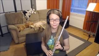 "At Nightfall from ""Sword Art Online"", flute cover"