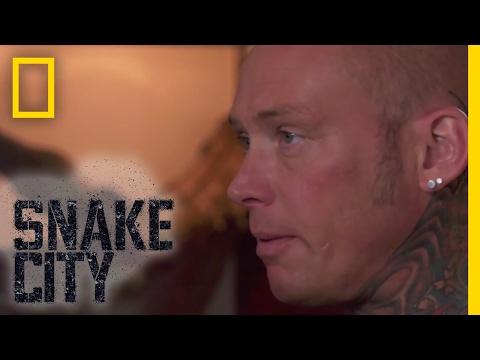 Spitting Cobras - Episode 3   Deadliest Snake Encounters