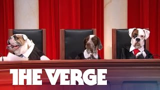 John Oliver's all-dog Supreme Court argues Aereo