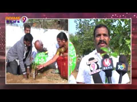 TRS Leader Surender Reddy Donated 1 Lakh Mango Plants to Kothakonda Jatara Devotees | Prime9 News