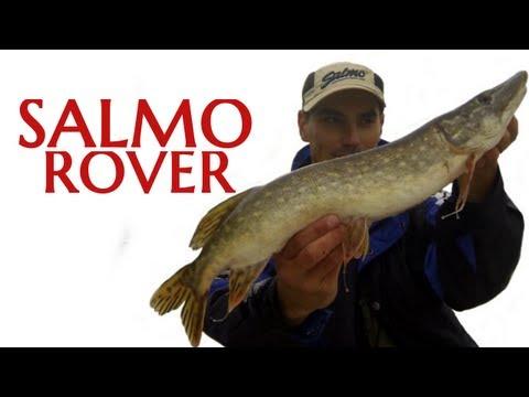 Wędkarstwo Spinningowe - Salmo Rover - Szczupaki i okonie