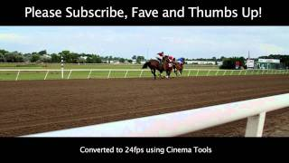 Canon 7D Film Look Color Grading Test - Les Bois Park Horse Racing