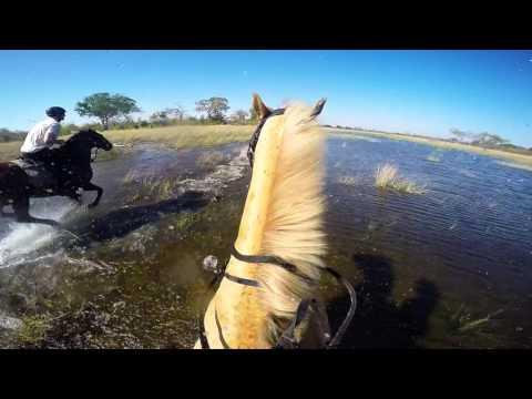 Epic Southern Africa Actions and Safari -GoPro HERO 4 OVERWERK Daybreak edit