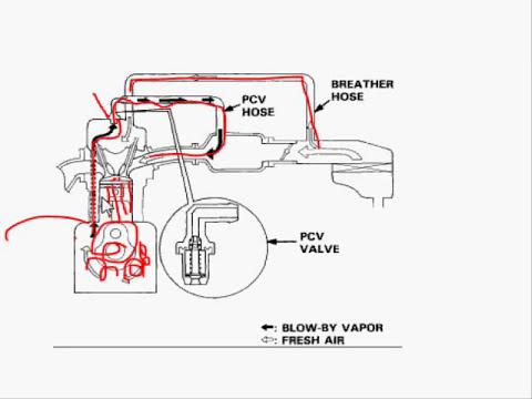 valvula pcv o valvula de ventilacion positiva del cartel