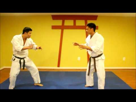 Shorin Ryu Karate applications