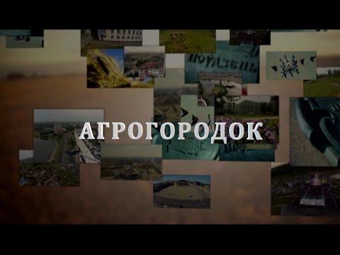 5 серия. Не в деревню, а в агрогородок. Итоги аграрной политики независимой Беларуси