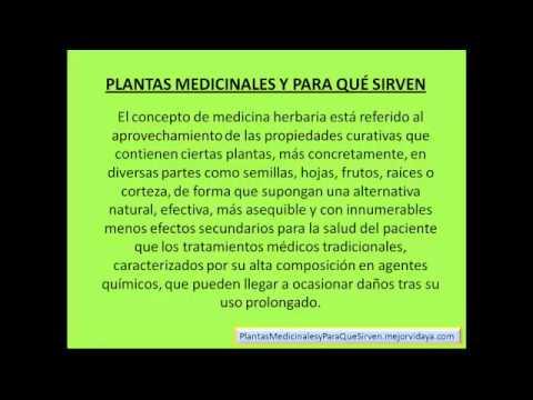 Plantas Medicinales Y Para Que Sirven - Cúrese