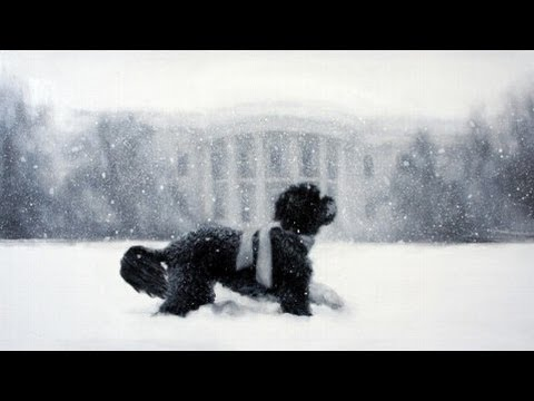 Republicans Furious Over Bo Obama Holiday Card